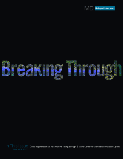 Breaking Through Summer 2017