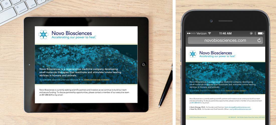 Novo Biosciences Branding & Case Statement